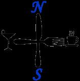 ns-logo-black